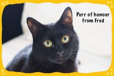 Purr of honour from Fred