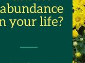 Attract Abundance Your Life Quickly