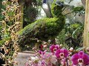 IMAGINARY WORLDS Atlanta Botanical Garden Caroline Arnold Intrepid Tourist