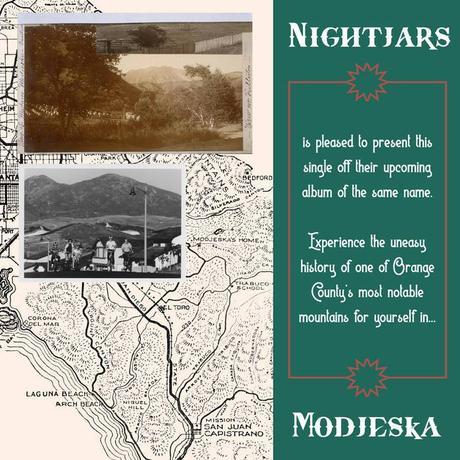 Nightjars – 'Modjeska'