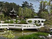 GARDEN FLOWERING FRAGRANCE: Chinese Garden Huntington, Marino, Caroline Arnold Intrepid Tourist