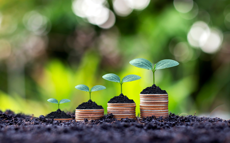 5 Tips to Grow Your Financial Investments