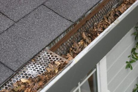 Gutters are Clogged? 5 Easy Ways to Check It