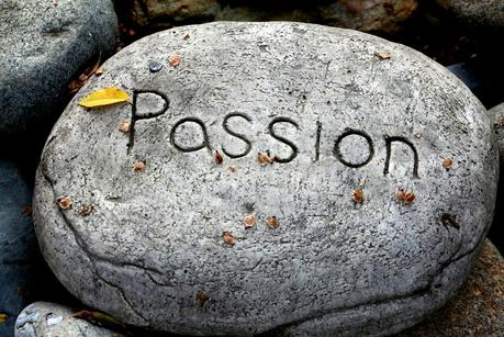 Are you Following your Passion?