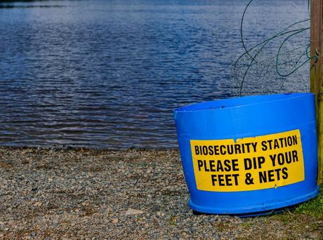 A bucket by a lake with a sign reading 'Biosecurity station. Please dip your feet and nets'