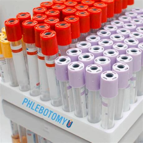 Phlebotomists are primarily responsible for the collection of blood specimens using standard phlebotomy techniques. common phlebotomy equipment (1) | PhlebotomyU