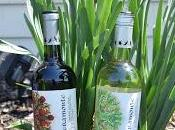 Celebrate Earth with Veramonte Organic Wines