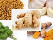 Immunity Boosting Herbs Covid