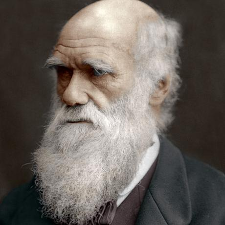 Interesting Facts About Charles Darwin