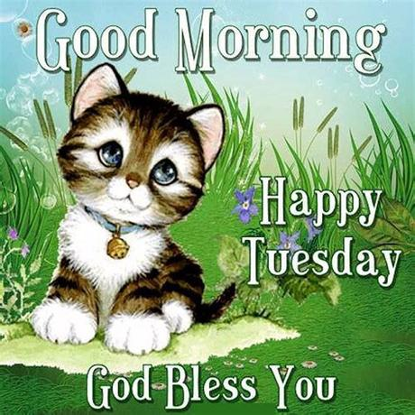 Sharing some crazy and hilarious tuesday morning funny quotes sayings, pictures and images to tickle your funny bone! Good Morning Happy Tuesday God Bless You Cute Quotes ...