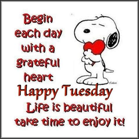 Sharing some crazy and hilarious tuesday morning funny quotes sayings, pictures and images to tickle your funny bone! Snoopy Inspirational Tuesday Quote Pictures, Photos, and ...