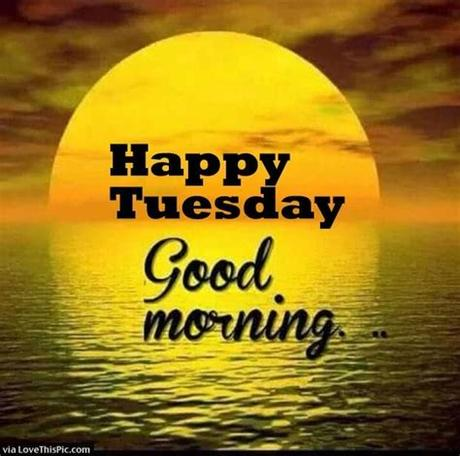 Tuesday is a day of the week where the routine is in full swing; Which are the best Tuesday quotes? - Quora