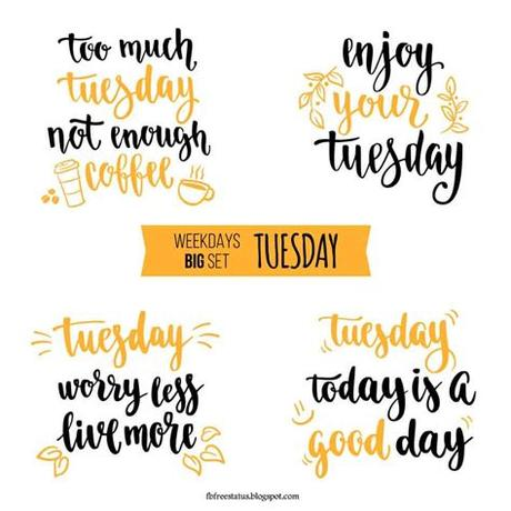 Work hard and find a lot of reason that you can be whatever you want to be. Funny Tuesday Quotes to be Happy on Tuesday Morning ...