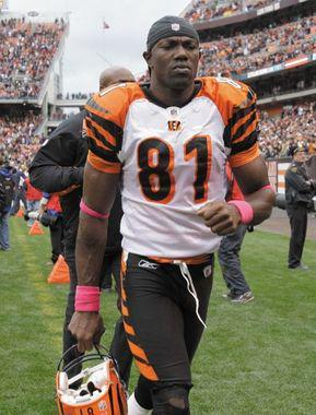 The Seattle Seahawks reached a one-year deal with Terrell Owens, 38, tonight. (AMY SANCETTA/The Associated Press file)