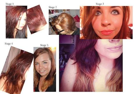 Hair Stripping, Dying, Red, Brown and Ombre.