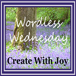 Wordless Wednesday - Messy hair