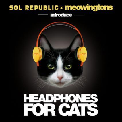 Headphones for Cats: © Sol Republic