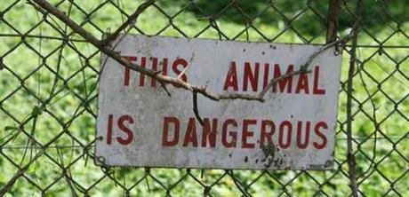The Top 10 Funniest Zoo Signs Show Who The Real Animals Are