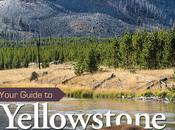 Your Guide Yellowstone Grand Teton National Parks Book Review!