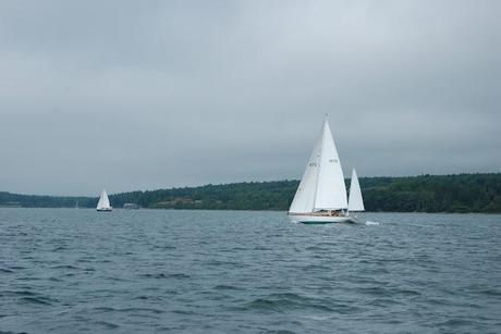 Wilder Pictures + Happenings: Eggemoggin Reach Regatta, Part 3 (or) Sailing Home