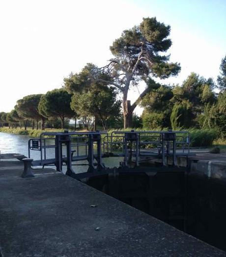 Lock along the Canal de Jonction
