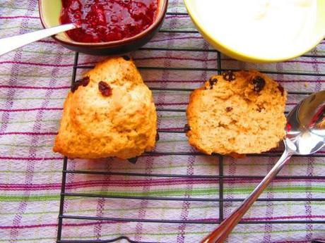 Buttermilk scones set out with jam and cream ready to serve