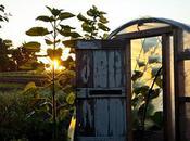 Beeltlebung Farm, Chilmark,
