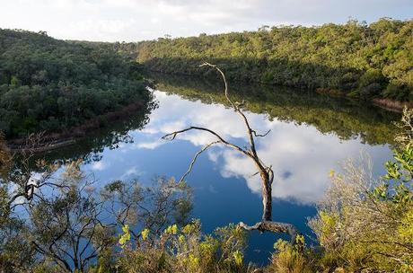 reflections on glenelg river