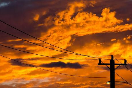 power lines at sunrise