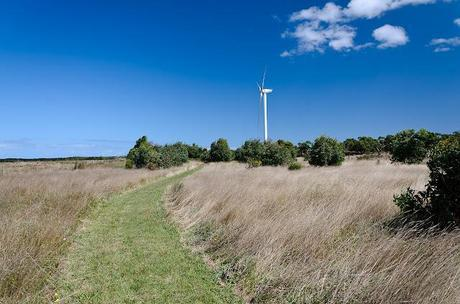 wonthaggi wind farm
