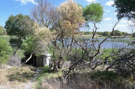 bird hide at baxters wetland