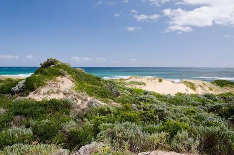 sand dunes at baxters beach