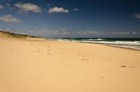 baxters beach