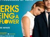 "There's Musical ""Perks [to] Being Wallflower"""