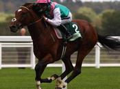 Frankel Wonder Horse Setting Record After Record.