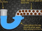 Stinky Basements, Plumbing Fixtures, Sewer
