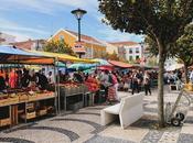 Scenes From Caldas Rainha