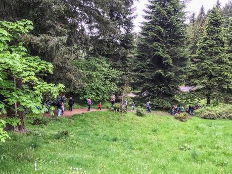 family forest days hoyt arboretum