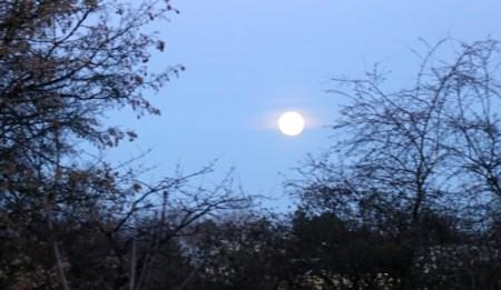Some Deeper Aspects about Doing Full Moon Meditations