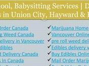 Canada Online Dispensary