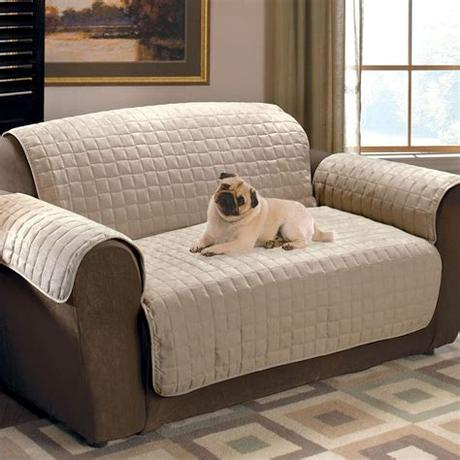 Inspirational sofa pet cover architecture. 20 Collection of Pet Proof Sofa Covers   Sofa Ideas