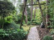 Japanese Garden Pinetum Gardens