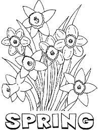 First spring flowers are typically. Free Spring Flowers Coloring Pages Download Everyone Dreams Of Spring Flowers During Winter Spring Coloring Pages Free Coloring Pages Spring Coloring Sheets