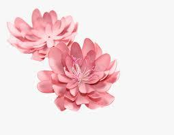 Here you can find different types of flower pictures, among them red flowers, white flowers, rose flowers, spring flowers, flower wallpapers and other flower images. 3d Flowers Free Png 3d Flower Png Free Transparent Png Transparent Png Image Pngitem
