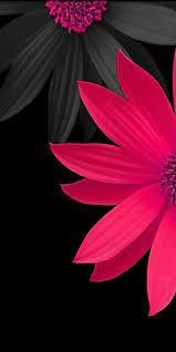 3d printer printer 3d print technology design abstract motherboard white. Pink And Black 3d Flowers Wallpaper Pink Flowers Wallpaper Beautiful Flowers Wallpapers Beautiful Wallpapers