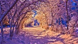 You can also upload and share your favorite wallpapers landscape. Nature Winter Landscape Wallpapers Hd Desktop And Mobile Backgrounds