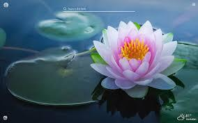 Download hd wallpapers for free on unsplash. Lotus Flower Hd Wallpapers New Tab Theme