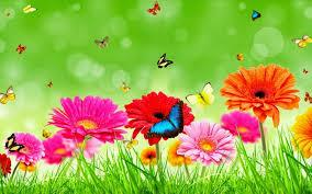 Flowers bouquet wallpapers for new year. Flower New Hd Images Blogs Nature Wallpaper