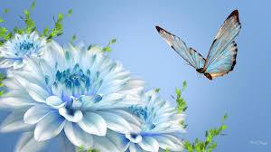 Free download high quality wallpapers gorgeous images. Hd Wallpapers Nature Flowers Group 81