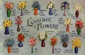 Find the flower names below, along with a brief description, a photo, and some guidance for those of you who are interested in gardening. Flower Meanings Symbolism Of Flowers Herbs And More Plants The Old Farmer S Almanac